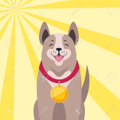 Rappel licence de chien